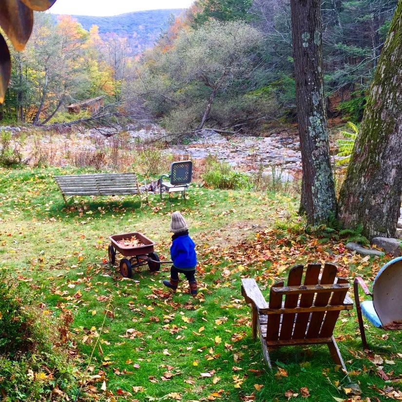Miezenfähigkeiten – Drei Tage in den New Yorker Catskills(DE/EN)
